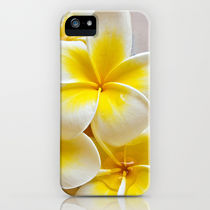 Society6 iPhone4/4S,5用 Plumeria Blossoms