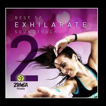 ZUMBA(ズンバ) CD・DVD レア♪ZUMBAズンバBest Of Exhilarate Soundtrack, Vol. 2