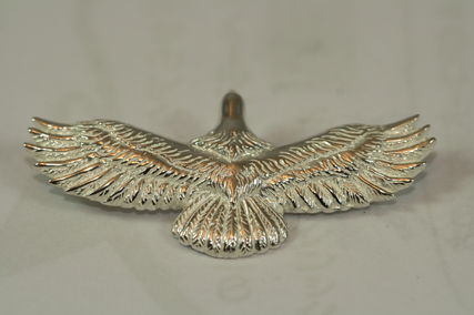 K-Silver ネックレス・チョーカー silver925 White Eagle ペンダントトップ ☆☆☆(4)