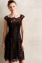 Anthropologieアンソロポロジー Leopard Lace Dress