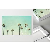 Society6◆スケッチキャンバス◆Palm Trees by Bree Madden