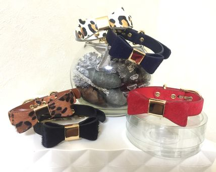 Fashionable and must-see Ribbon dog lead collar set
