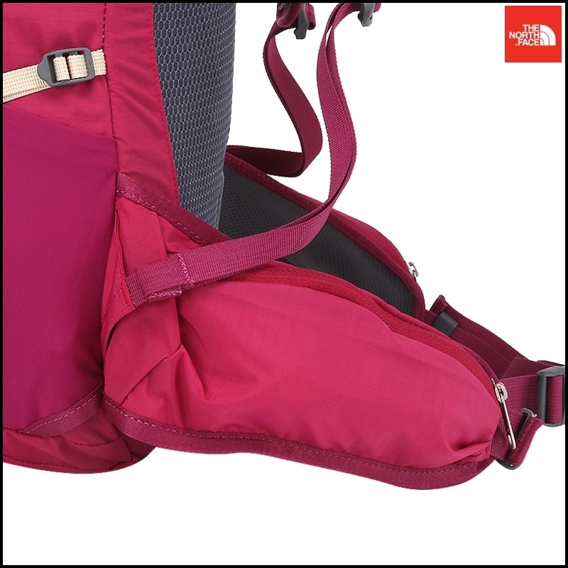 (NEW) THE NORTH FACE (ザノースフェイス) バックパック TRF 25