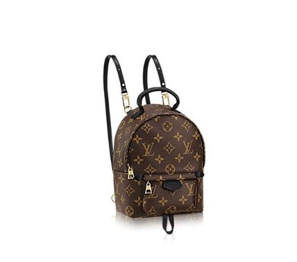 Louis Vuitton ルイヴィトン バックパックMINI M41562