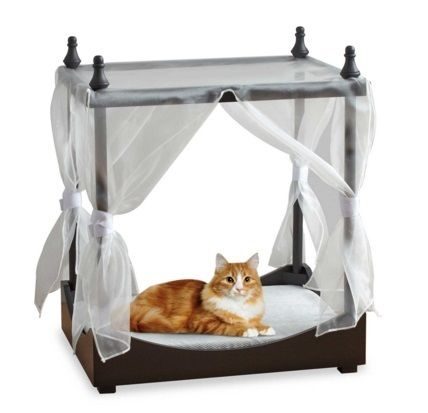 Dog for canopy with pet bed / canopy