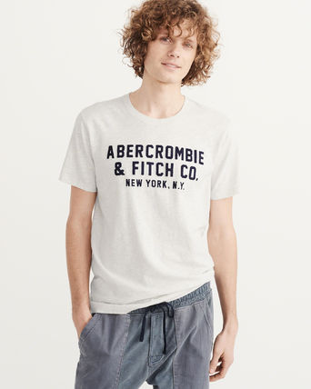 Abercrombie & Fitch Tシャツ・カットソー アバクロ メンズTシャツAPPLIQUE GRAPHIC TEE グレー(6)