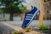 【送料無料】 Adidas Samoa VNTG (Night Sky/Light Blue/Gold)