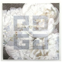 Oliver Gal Dove White キャンバスアート