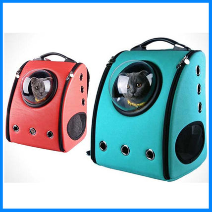 Positive articles about animal transport bag