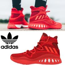 adidas新作スニーカー!CRAZY EXPLOSIVE