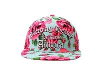 日本未入荷DISNEYの DISNEY PRINCESS Sleeping Beauty CAP