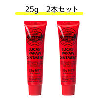 LUCAS PAPAW OINTMENT(ルーカス ポーポー オイントメント) スキンケア・基礎化粧品その他 ルーカスポーポーオイントメントお試し 25g 2本セット☆