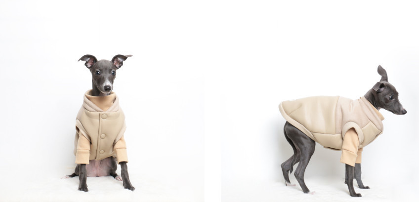 ◆for Dog◆ WARM SUADE & LEATHER_BEIGE