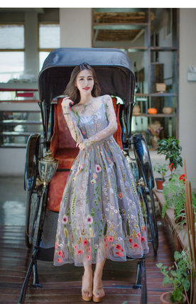 See-through embroidered long dress party dress