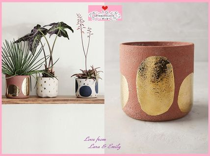 17th SS * Anthro Glowing Arbor Pot