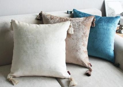 color Tassel with stylish Cushion cover