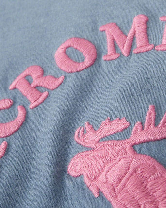 Abercrombie & Fitch トップス  新作  アバクロ・キッズガールズ   fitted patch  tee(2)
