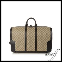 Eden carry-on bag with wheels