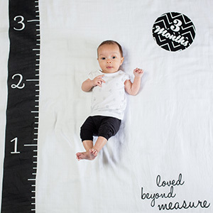 Lulujo☆baby's first year blanket & cards sets☆モノトーン☆