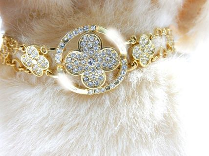 Cats and dogs and for Gold Flower go gorgeous collar