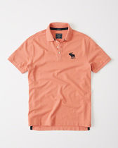 Abercrombie & Fitch Big Icon Polo