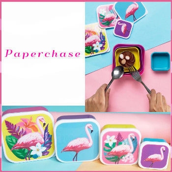 Paperchase paper chase Flamingo lunch BOX 4 set
