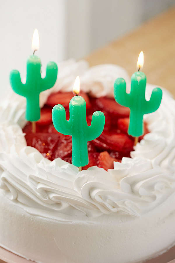 Urban Outfitters☆Sunnylife Cactus Cake Candle Set☆