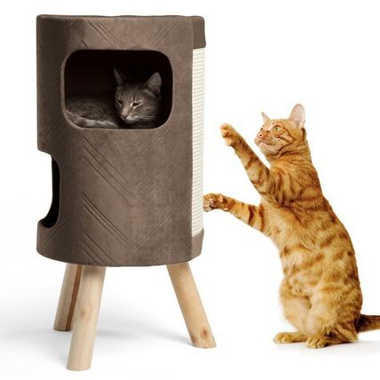 Nail fairy with cat house pet bed Tower