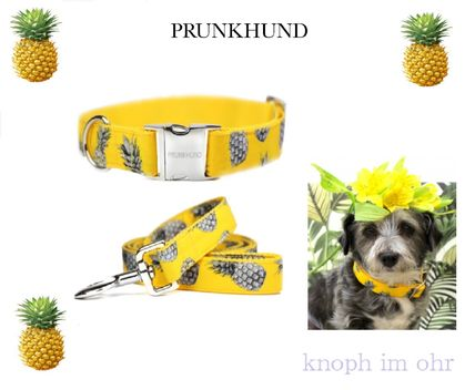 PRUNKHUND # dogs neck sticking wheel & leasing small-for