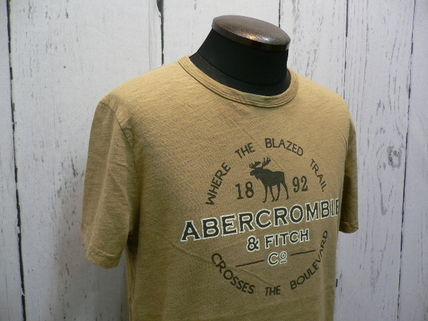 Abercrombie & Fitch Tシャツ・カットソー アバクロ 半袖Tシャツ 195-123-0902-099 A&F 正規店購入  (8298)(2)