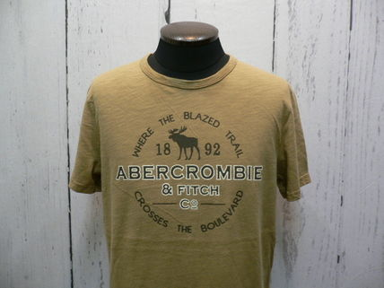 Abercrombie & Fitch Tシャツ・カットソー アバクロ 半袖Tシャツ 195-123-0902-099 A&F 正規店購入  (8298)(4)