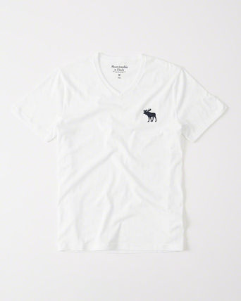 【Abercrombie】BIG ICON V-NECK TEE お得2枚セット