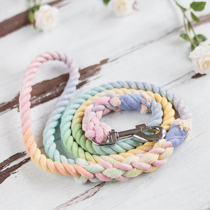 For dogs, the crowded lead, pastel Rainbow shipping