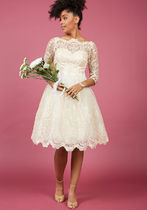 chi chi london gilded grace lace dress in ivory