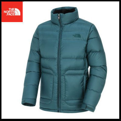 (ザノースフェイス) M'S DAY OUT DOWN JACKET GREEN NSJ1DF55