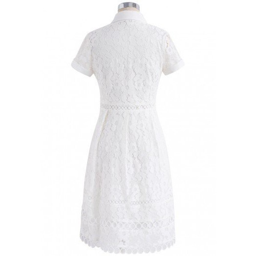 国内発・送関込み☆Chicwish☆Feminine Full Lace A-line Dress
