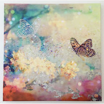 Oliver Gal 小さい 41x41cm Butterfly Dance キャンバスアート