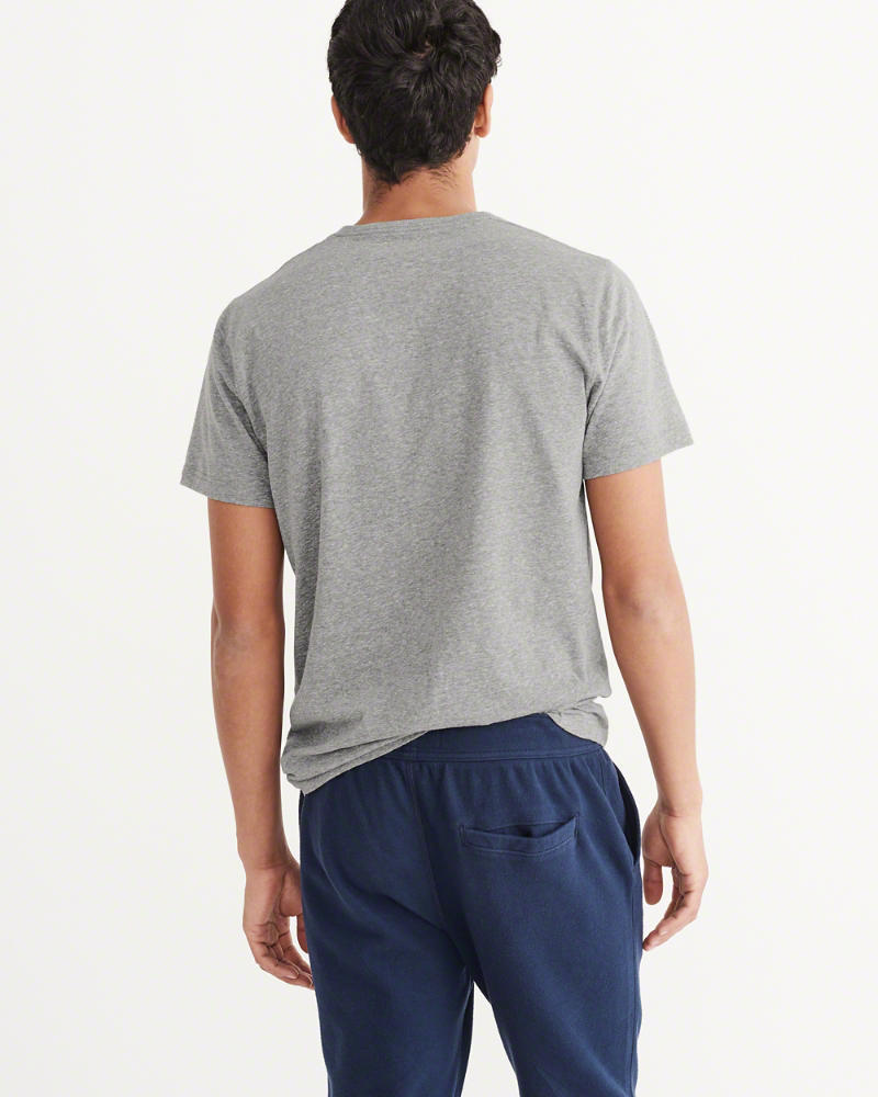Abercrombie & Fitch Big Icon V-Neck Tee