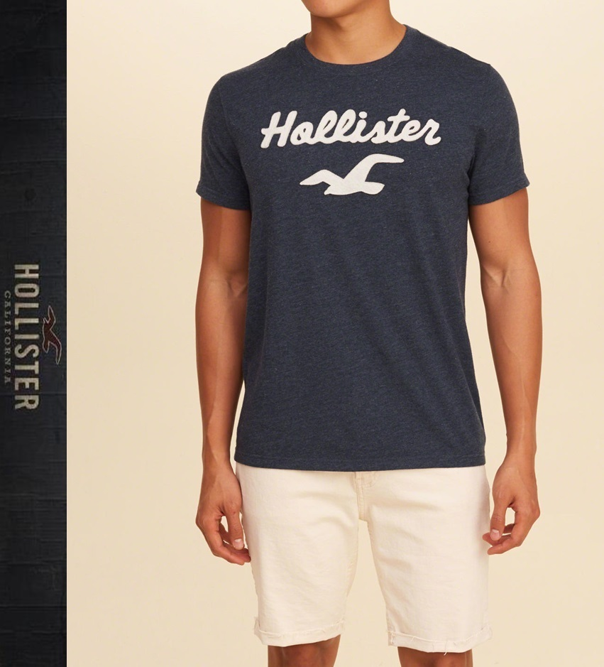 ★即発送★在庫あり★Hollister★Logo Graphic Tee★
