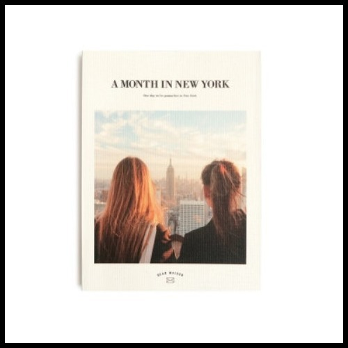 ◆DEAR MAISON◆ A MONTH IN NEW YORK DIARY ver.6