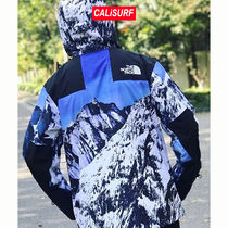 コラボ☆ Supreme x TNF mountain light jackets/size S