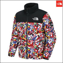 【日本未入荷】 THE NORTH FACE M'S NATION NUPTSE DOWNJACKET