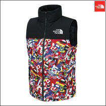 【新作】THE NORTH FACE  ★ M'S NATION NUPTSE DOWN VEST
