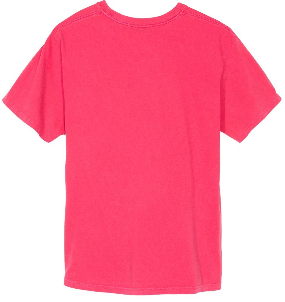 【STUSSY】☆17FW最新作☆PIG. DYED BASIC PKT TEE