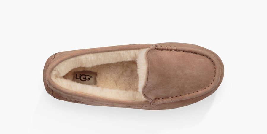 [UGG] Ansley#Fawn