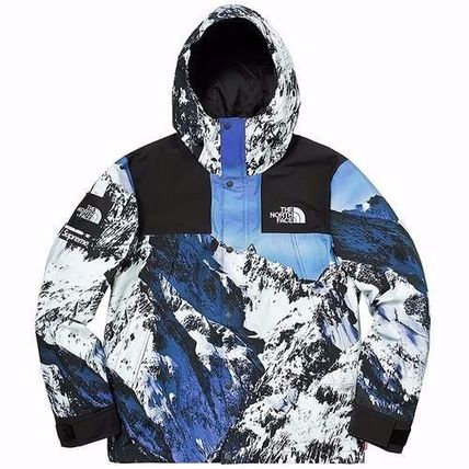 17FW 新作コラボ SUPREME / THE NORTH FACE Mountain Parka