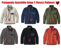 Love it  Patagonia Synchilla Snap-T Fleece Pullover