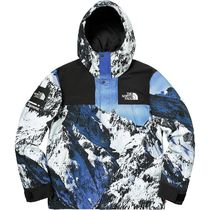 Supreme 17AW The North Face Mountain Parka M 国内発送