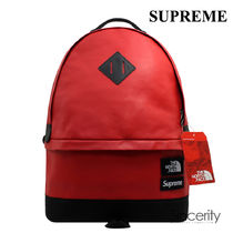 SUPREME THE NORTH FACE LEATHER DAY PACK / RED