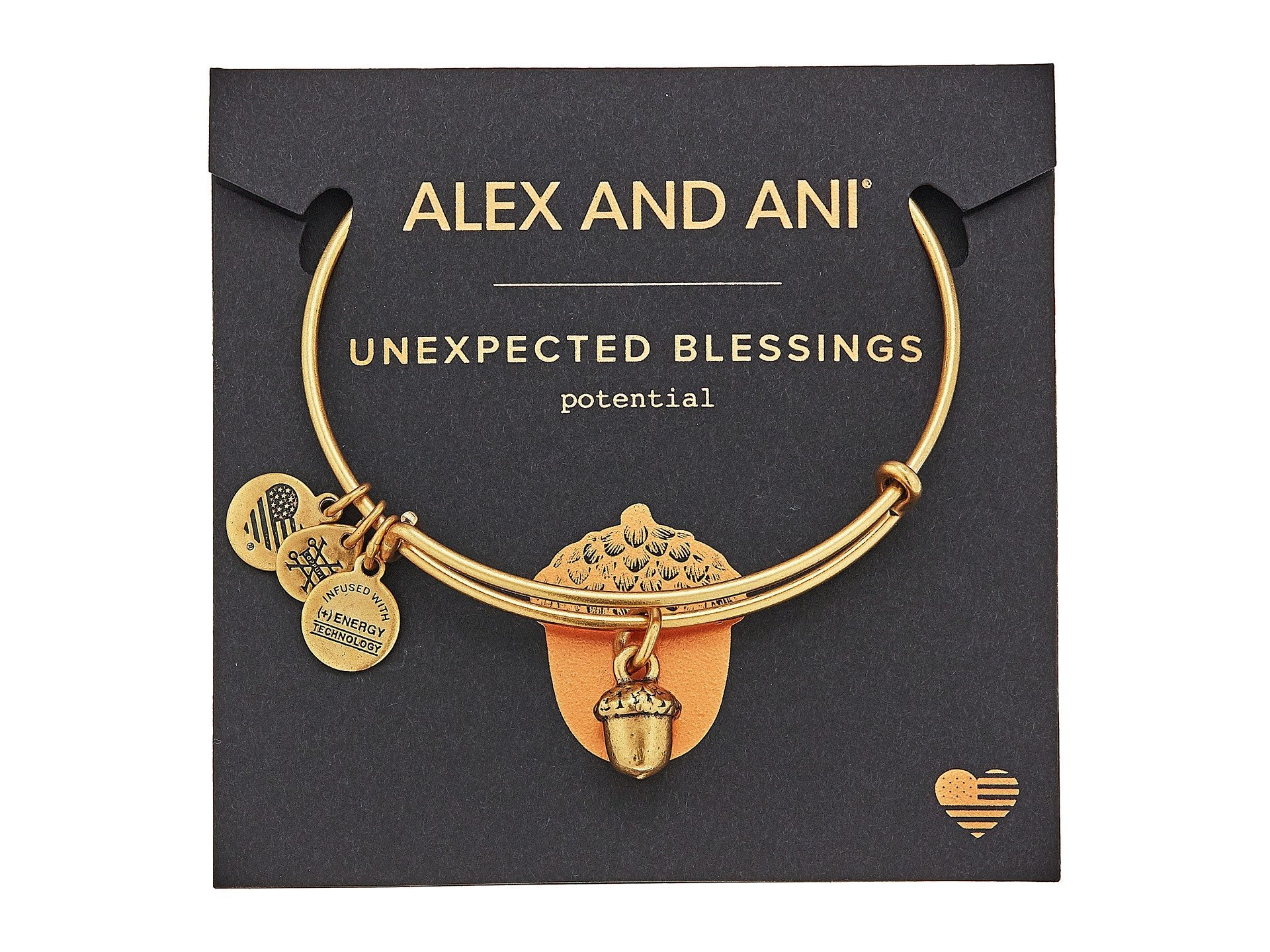 Alex and Ani★Path of Symbols - Unexpected▽送料関税込